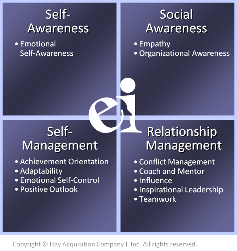 working with emotional intelligence pdf torrent
